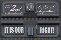 2nd Amendment Is Not A Suggestion Engraved AR10 Ejection Port Dust Cover - Premium Images Inside & Outside